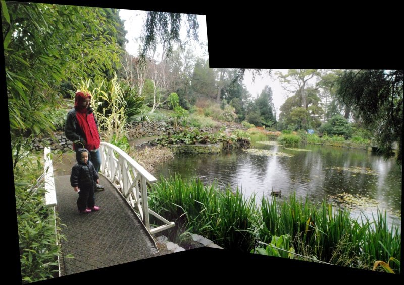 Panorama of Sonia and Clancy enjoying the Lily Pond bridge