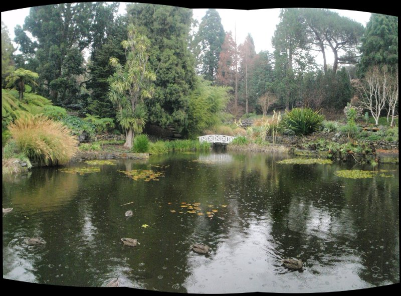 Lily Pond panorama, Royal Tasmanian Botanical Gardens