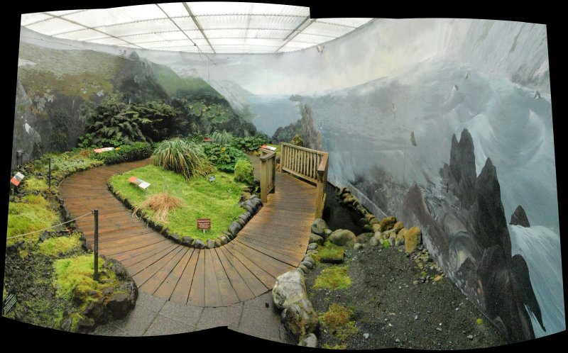 Panorama of the Sub-Antarctic Plant House, Royal Tasmanian Botanical Gardens