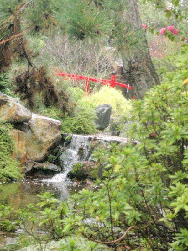 Japanese Garden, Royal Tasmanian Botanical Gardens