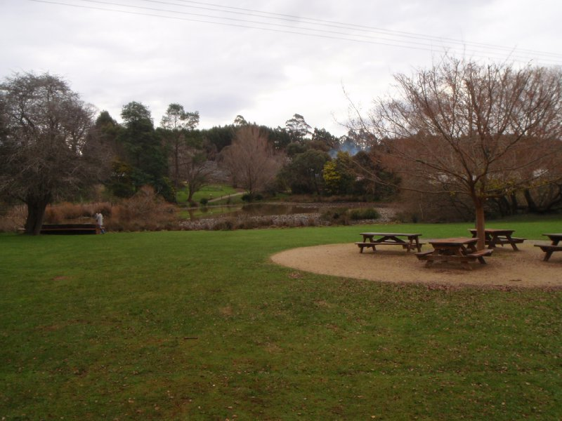 Cafe picnic area