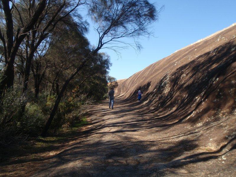 Walk trail beside Hyden Rock