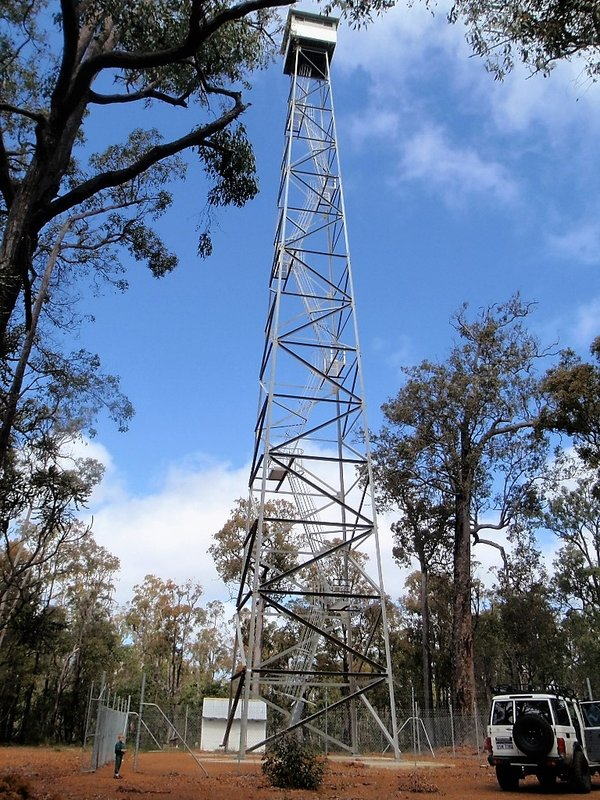 Mungalup fire tower