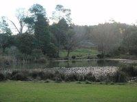 The Raspberry Farm Lake