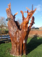 Tree Stump Wood Carving, Campbell Town