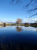 Macquarie River, Ross