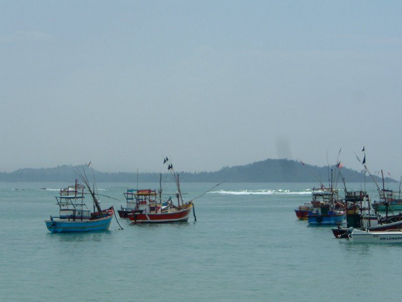 Colourful boats on the coast
