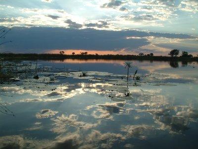 Okovango Delta