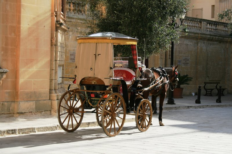 Transport Malta style