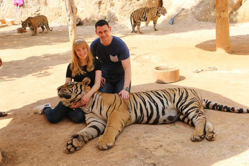large_Day_2_Tigers_14.jpg