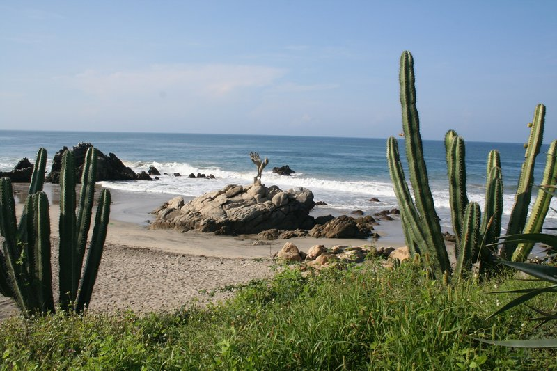 Playa Zicatela