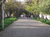 image056.jpg
