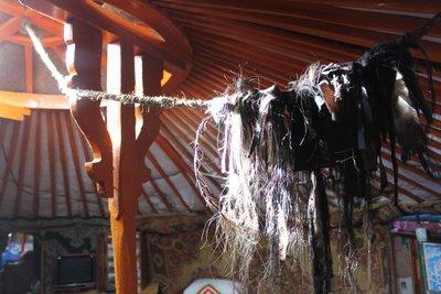 Horsehair in ger