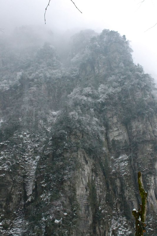 large_Mount_Emei_22.jpg