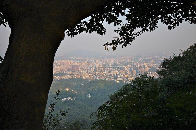 large_mountain13.jpg