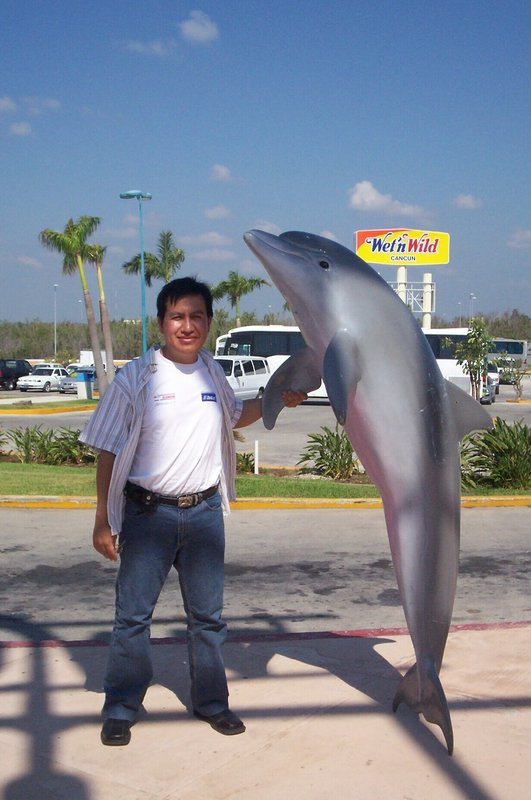 You like dolphins? me too!