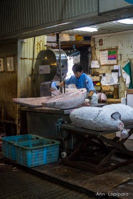 Tuna being cut with a saw at Tsukiji Fish Market