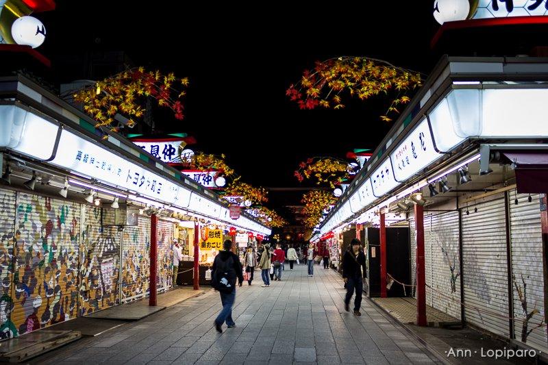 The shopping area Sensoji Temple at night.
