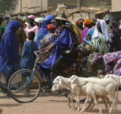 Fulani man on Djenne's market
