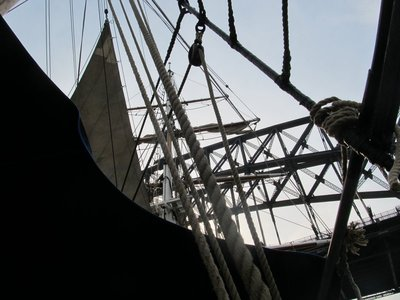 Southern Swan Rigging