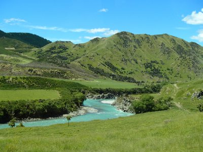 Springtime in New Zealand!