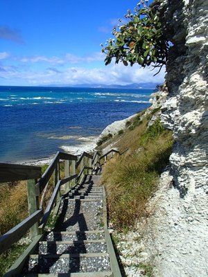 Coastal Walk, Kaikoura