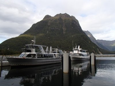 Out boat for Milford Sound