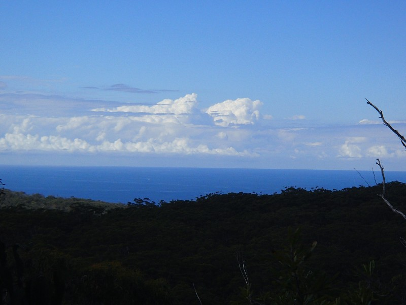 Views from Cooloola Sandpatch