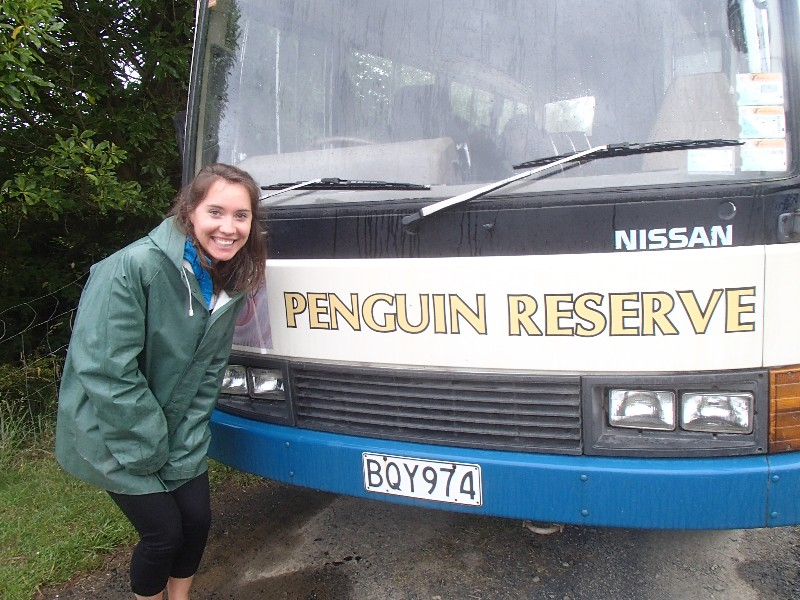 Penguin Tour!