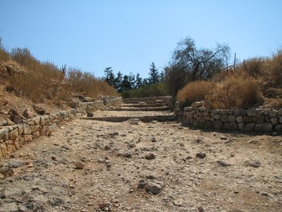 Ancient roman road leading to Peristyle house