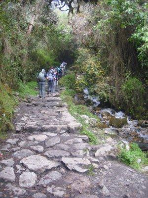 A_rainfore.._Inca_Trail.jpg