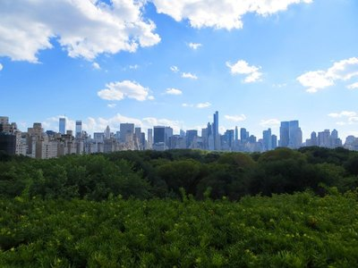 View from the Met rooftop
