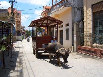 Local Taxi Service