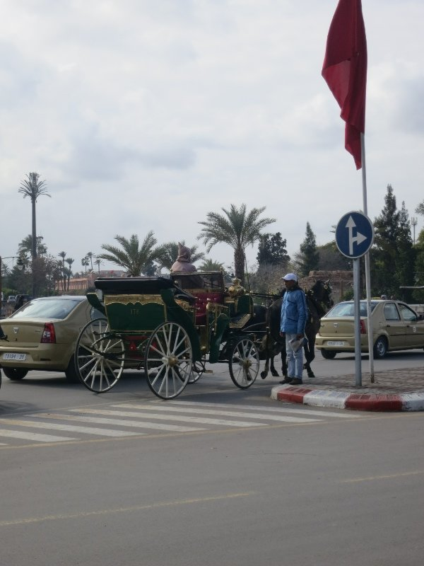 Yes a horse and cart is perfectly acceptable amongst traffic