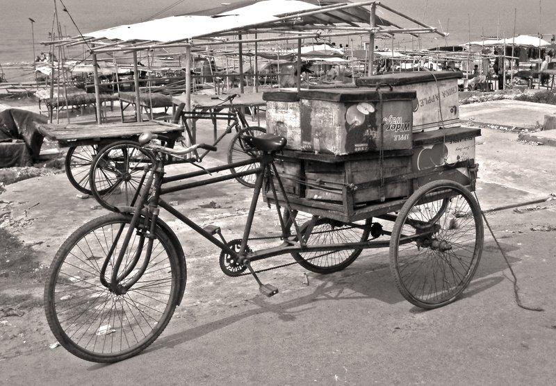 Bike and Supplies