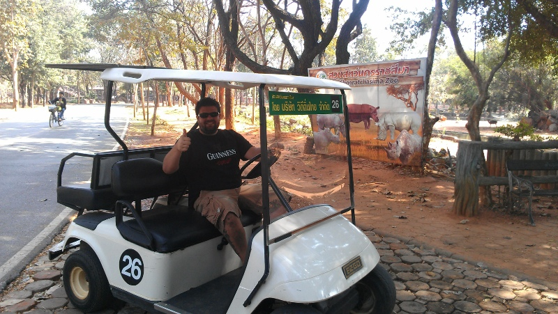 The zoo is so massive, they offer bike or golf cart rental to get around. We choose golf cart