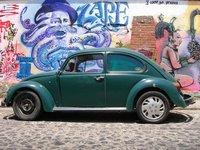 VW Beetle & Graffiti, Oaxaca
