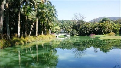 Inhotim Gardens