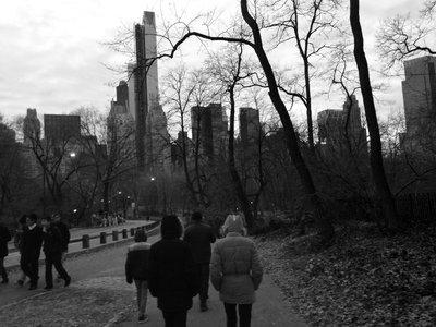 Dusk in Central Park