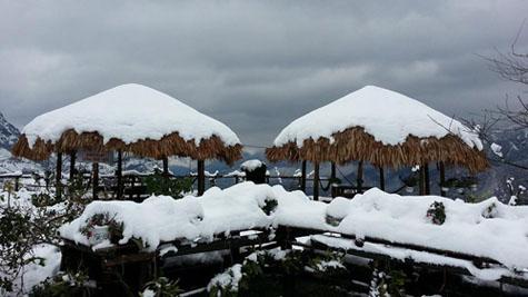 Sapa snow16