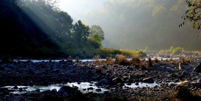 Early morning in Jim Corbett Park