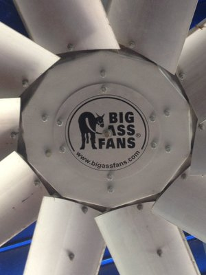 It was a big fan......