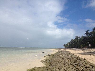 Windward side of Green Island