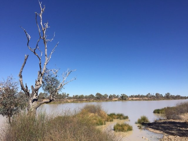 Diamantina River, Birdsville