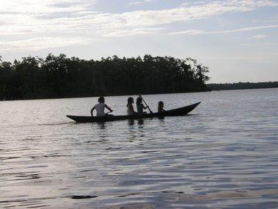 Sur le delta de l'Orénoque