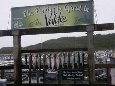 Fishing is great in Valdez