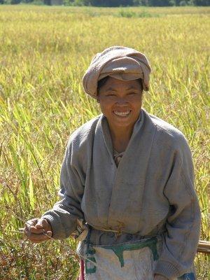 Paysanne Lao