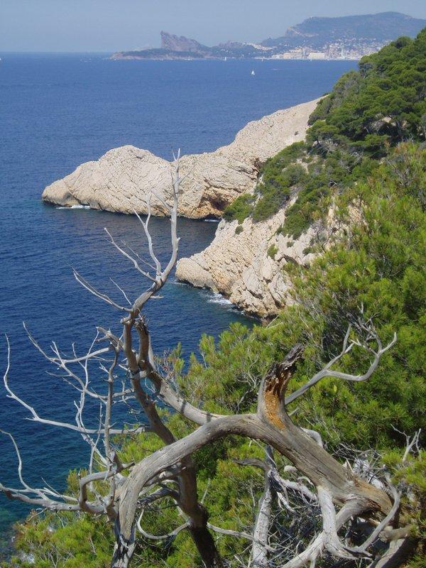 Pointe Fauconnière