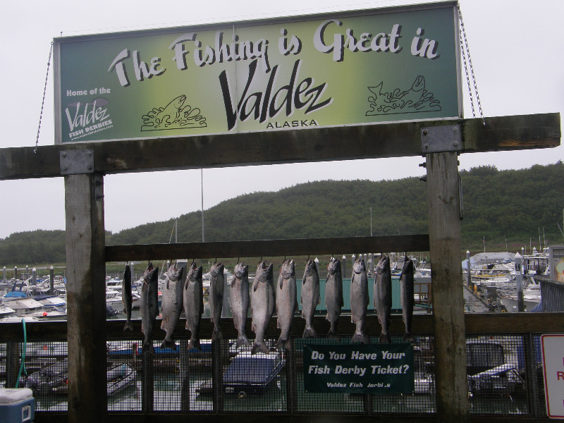 Fishing is great in Valdez