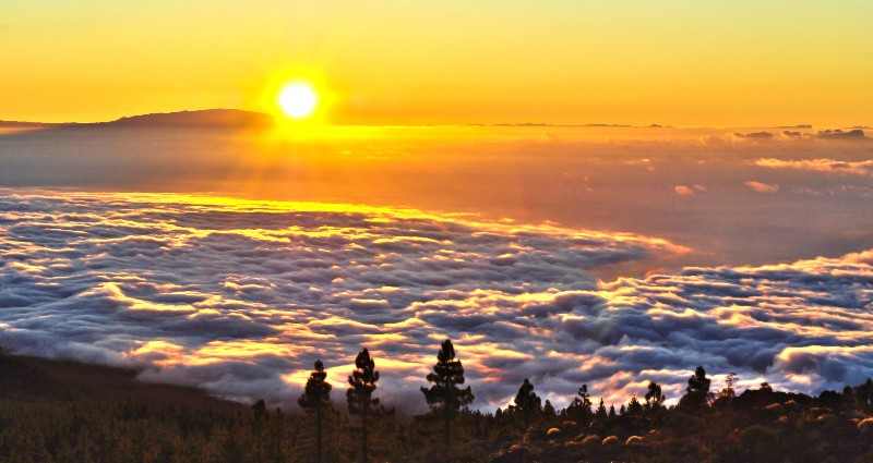 Sea of Clouds - Tenerife